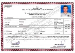 tavan-vinci-sertifikasi